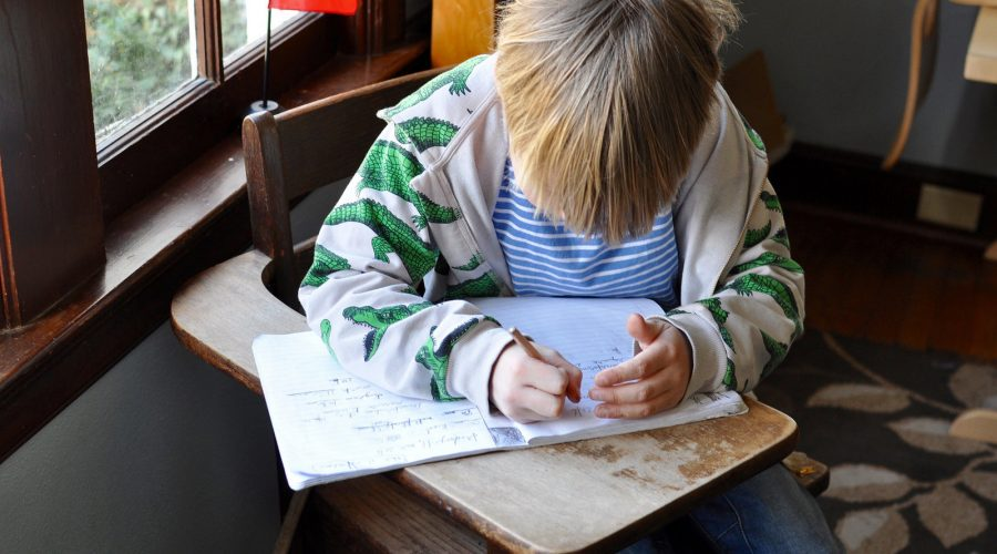 Montessori: Assessment in the Lower Elementary Classroom